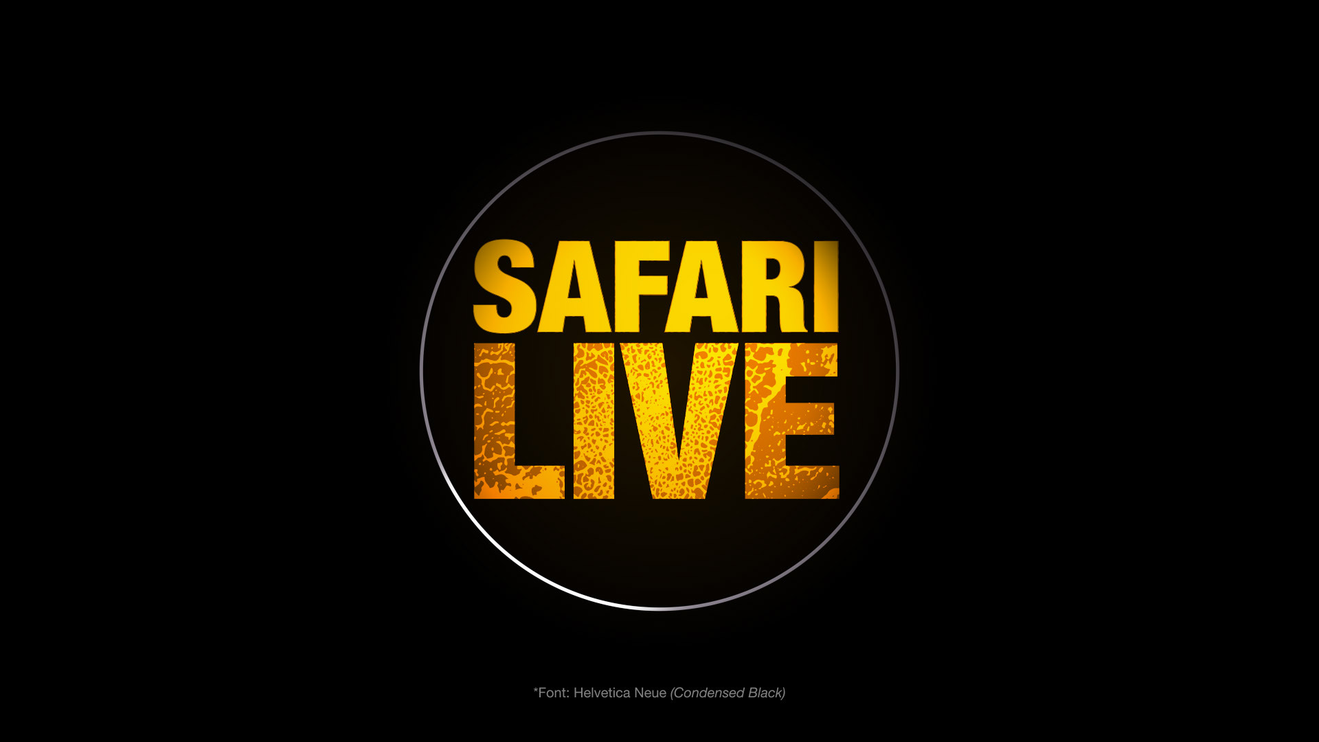NAT_GEO_SAFARI_LIVE_INITIAL_CONCEPTS_16TH_OCT_17-23