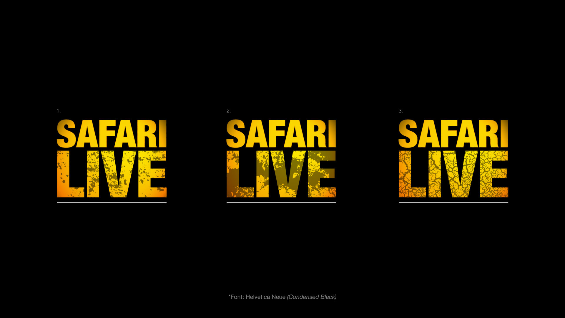 NAT_GEO_SAFARI_LIVE_INITIAL_CONCEPTS_16TH_OCT_17-24