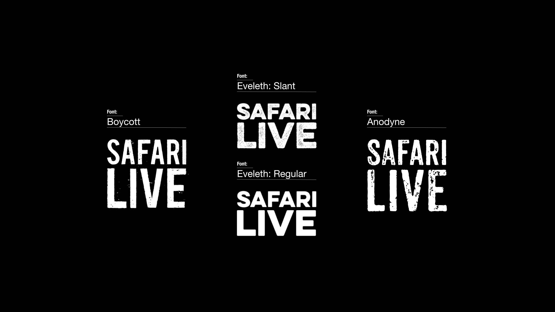 NAT_GEO_SAFARI_LIVE_INITIAL_CONCEPTS_16TH_OCT_17-4